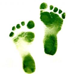 greenfootsteps