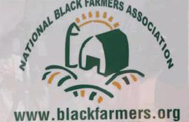 When will the black farmers settlement checks be mailed to farmers