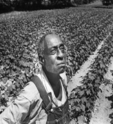 passed landmark legislation to fund claims filed by Black farmers