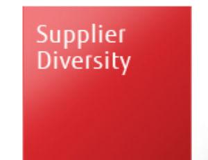 Opportunities in Supplier Diversity