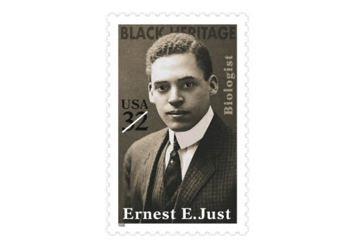 Ernest E. Just