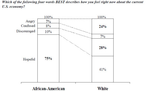 Despite being hurt more than whites by the recession, Blacks are considerably more optimistic. Nearly two-thirds of African-Americans believe the economy will turn around within the next two years, while just 50% of whites believe it will take longer than two years for an economic recovery.(Image source: Ariel Investments 2010 Black Investor Study)
