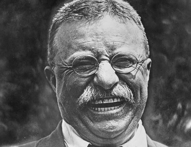 "THEODORE ""TEDDY"" ROOSEVELT, 26TH US PRESIDENT (1901-1909) 	1908 Under the name, Xavier Mayne, Edward Irenaeus Prime-Stevenson—also considered the first modern American-gay author—publishes The Intersexes, a defense of homosexuality."