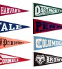 Princeton, Harvard, Cornell, Dartmouth, Brown, Yale, Columbia and UPenn all have the distinction of being named Ivy League institutions of higher education. Since February 1954 these eight universities have been heralded for their academic excellence and standout athletic achievements. 	Almost 60 years later, those institutions are still recognized as the most prestigious centers of higher learning nationwide. While the general train of thought would be that the Elite 8 would solely produce cerebral types, some of today's most notable and creative African American celebrities have walked their hallowed halls as well. With the back to school season in full swing, BlackEnterprise.com highlights 10 celebrities you probably didn't know attended an Ivy League school. —Amber McKynzie