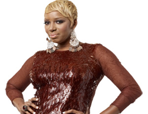 NeNe Leakes' Sitcom 'The New Normal' Cancelled