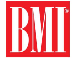BMI-300x232