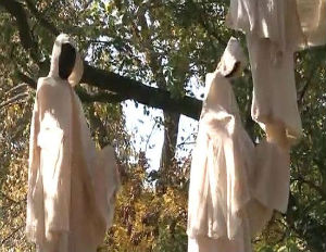 Racist?! St. Louis Zoo Removes Halloween Display of Lynchings