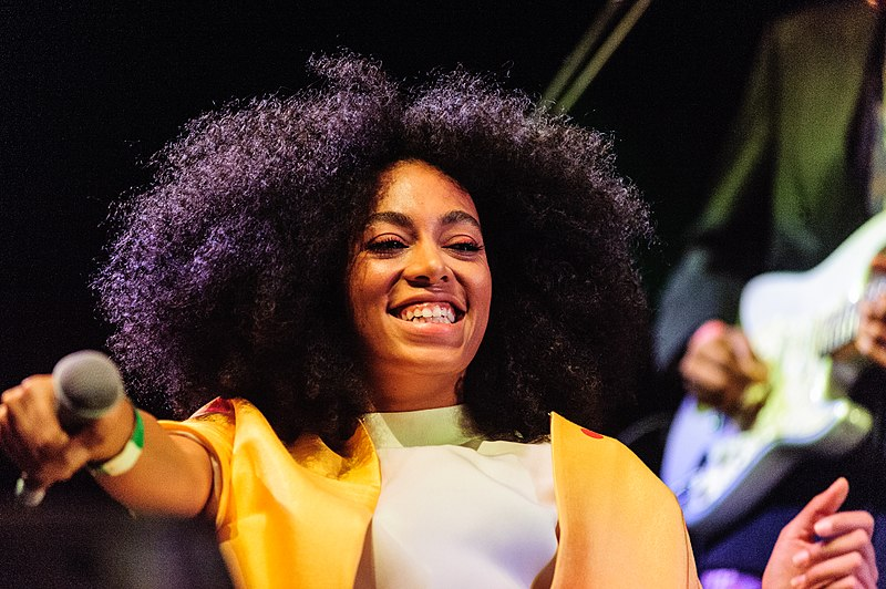 Solange Knowles' Hair Earns a Closer Inspection From the TSA
