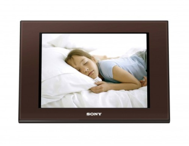 Digital Picture frames are an inexpensive gift that just about anyone can use. You can leave it empty, allowing the employee to put any picture that she chooses inside. If you want to get a bit more creative, you can insert a photo of the employee at work or a photo of the whole company.
