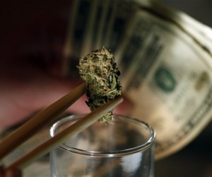 Where Marijuana is Legal, Dealers prepare to battle Corporate Cannabis