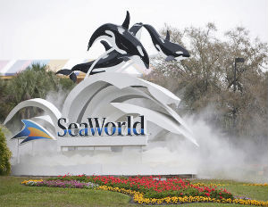 Sea World Entertainment Goes Public with IPO