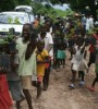 Trees in Haiti - Featured