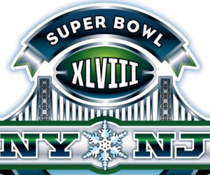 Super Bowl XLVIII May be too Cold for Performance