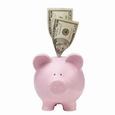 money pig2