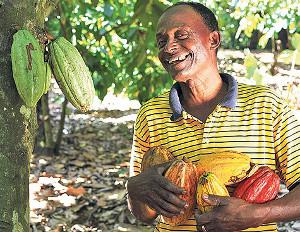 Companies Team Up to Train Cocoa Entrepreneurs in Dominican Republic