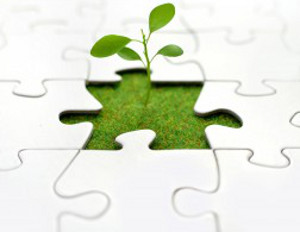 5 Essential Things to Consider Before Starting a Business