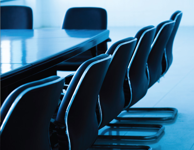 Selection criteria for the Top Diversity Executives: