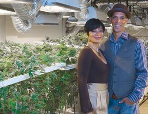 Marijuana Inc: Growing Opportunities For Black Businesses