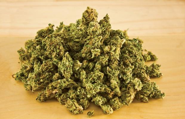 Medical Marijuana Stocks
