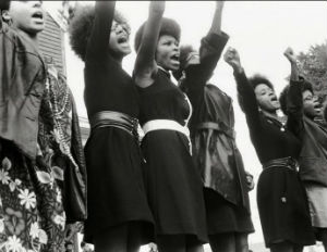 (Image: theblackpanthers.com)