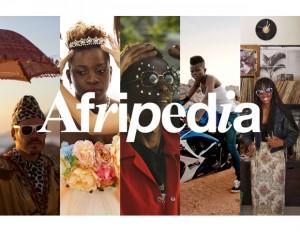 Afripedia logo-site hero
