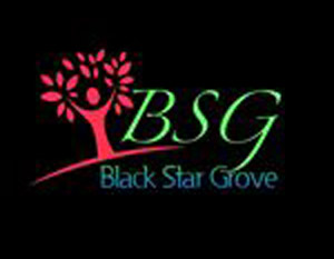 Black Star Grove Expands the Cultural Horizons of Black Youth