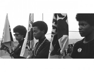 Vanguard of the Revolution-Black Panthers