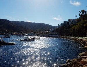 There's Something For Everyone at Santa Catalina Island