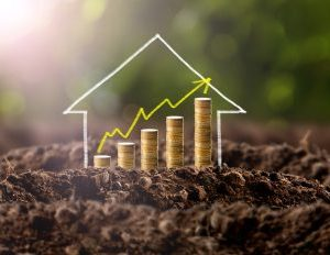 Now is the Time to Buy Real Estate and Create Significant Wealth