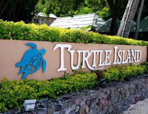 10 Reasons You Should Visit Turtle Island