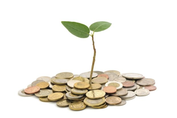 Seed Investment Equity Crowdfunding