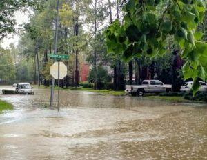 Minority Auto Dealers Group Raising $1M for Harvey and Irma Victims