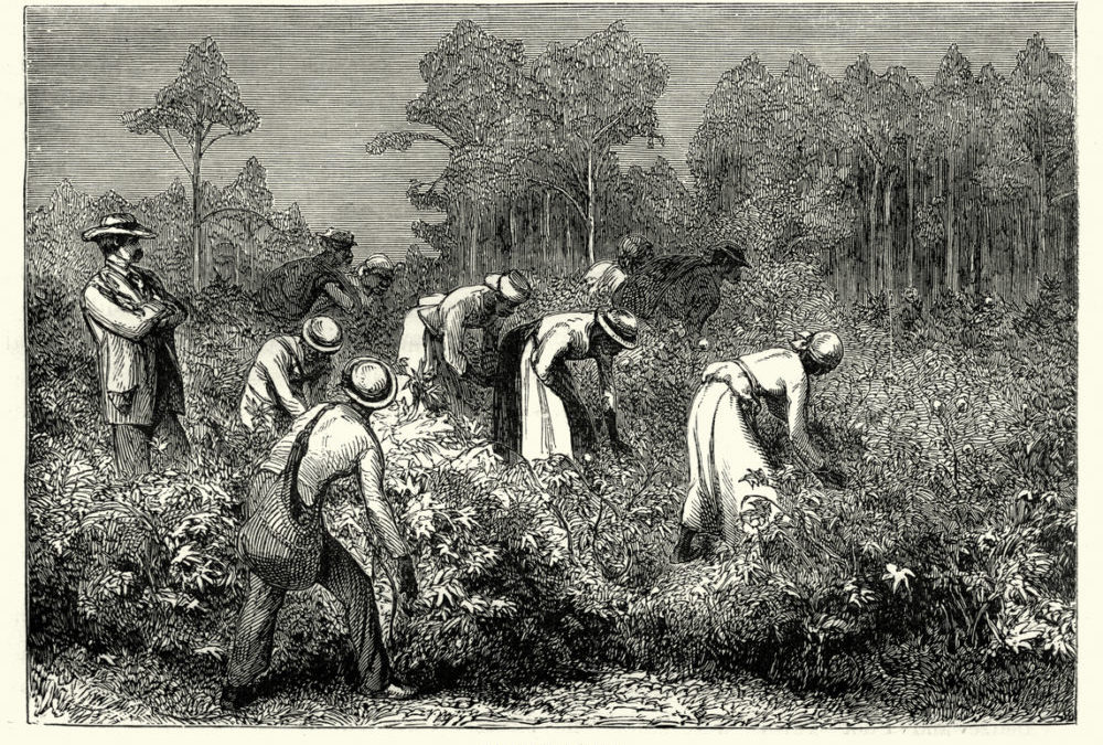 Ancestry.com Sparks Outrage for Using the Term 'Migrants' to Describe African Slaves