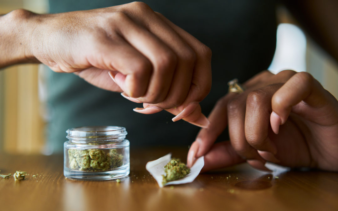 Colleges and Universities Now Offering Degrees in Marijuana